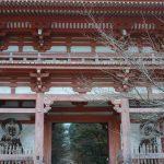 上醍醐寺から岩間寺、石山寺まで歩く。