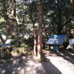 熊野古道中辺路、近露から滝尻まで歩きました。