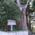 熊野古道紀伊路、印南駅から湯浅駅まで歩く。