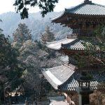 一乗寺、播州清水寺、花山院に行って来ました。