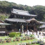 三室戸寺、醍醐寺、元慶寺に行って来ました。