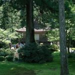 京都大原三千院に行って来ました。