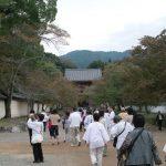 醍醐寺に行って来ました。
