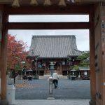 総持寺、善峯寺、穴太寺、勝尾寺に行って来ました。